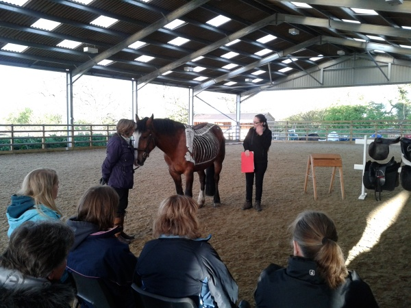 Lorna and equine assistant Fergal explain the horse's skeleton
